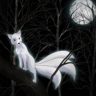 inari and her kitsune